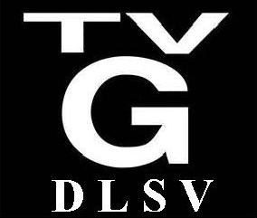 This Content Is Rated TV G For: D L S V