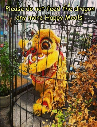 Please do not feed the dragon any more Happy Meals!
