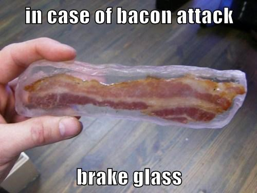in case of bacon attack   brake glass