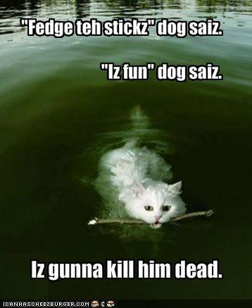 """""""Fedge teh stickz"""" dog saiz.""""Iz fun"""" dog saiz."""