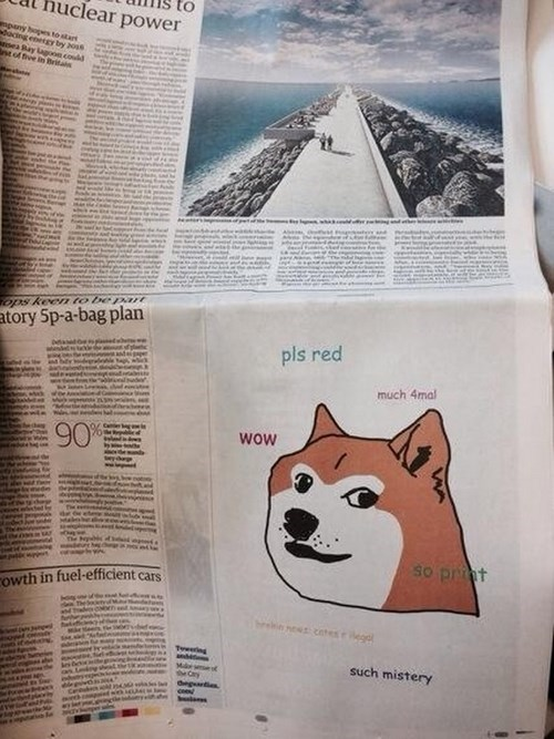 Ad of the Day: Company Takes Out a Quarter-Page Doge Ad in a UK Newspaper