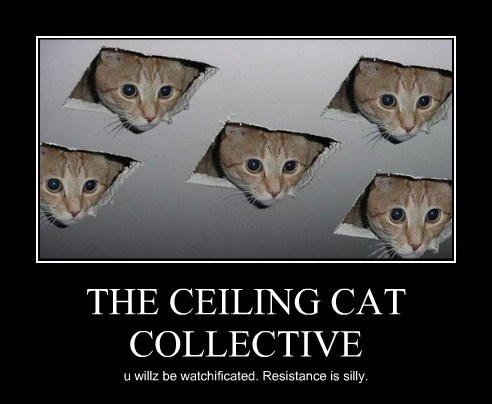 THE CEILING CAT COLLECTIVE