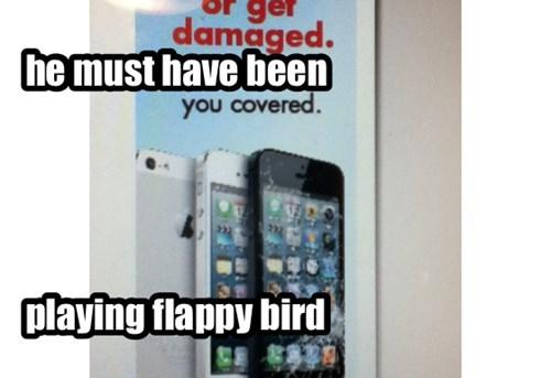 oh flappy bird