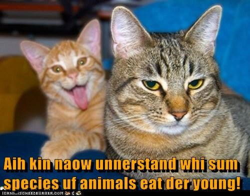 Aih kin naow unnerstand whi sum species uf animals eat der young!