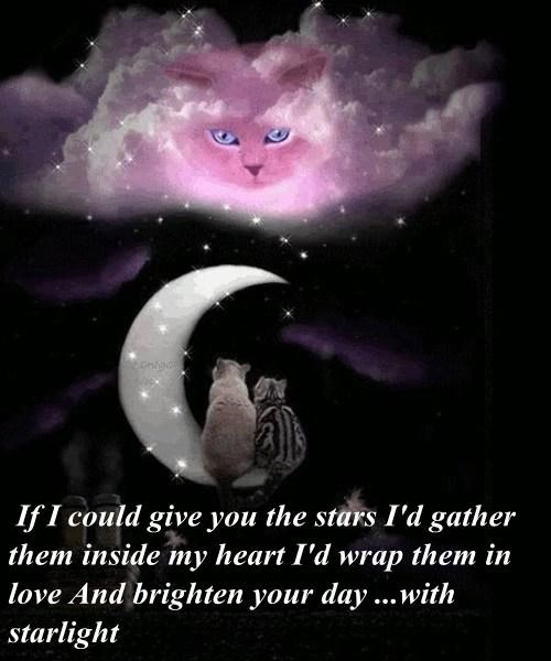 If I could give you the stars I'd gather them inside my heart I'd wrap them in love And brighten your day ...with starlight