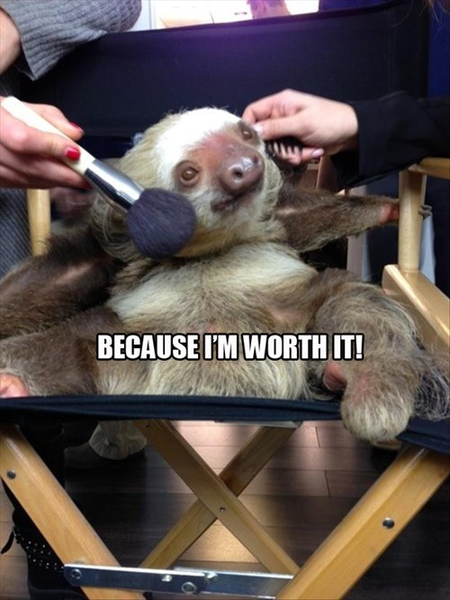 makeup,sloths,beauty,funny