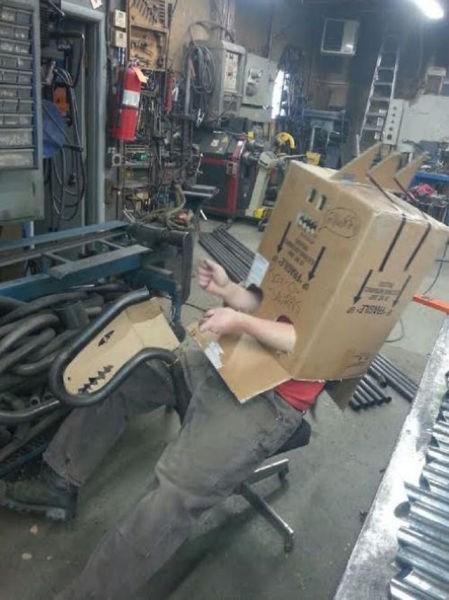 monday thru friday,work,cardboard box,boredom,dinosaurs