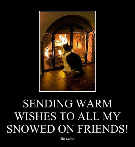SENDING WARM WISHES TO ALL MY SNOWED ON FRIENDS!