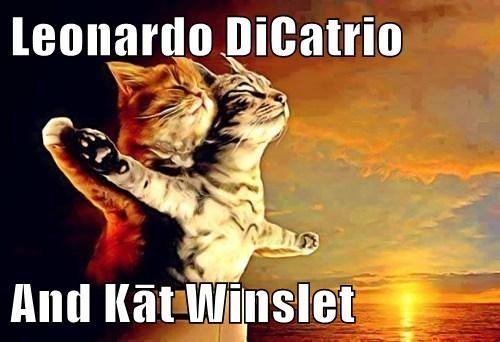 titanic,leonardo dicaprio,romance,puns,kate winslet,Cats