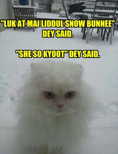 """LUK AT MAI LIDDUL SNOW BUNNEE"" DEY SAID.  ""SHE SO KYOOT"" DEY SAID."