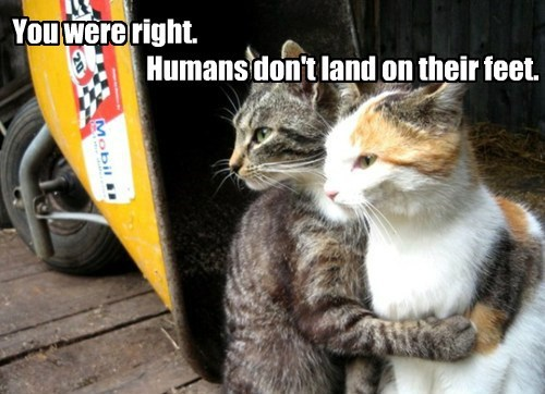 You were right.                                 Humans don't land on their feet.
