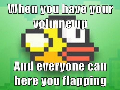 Flappy bird problems