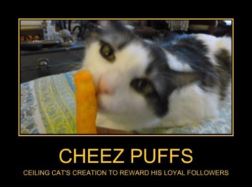 CHEEZ PUFFS