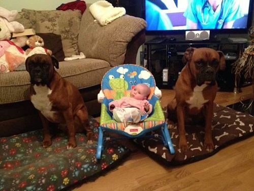 Well Guarded Baby