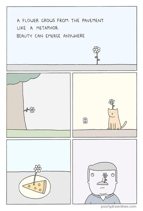 beauty,web comics