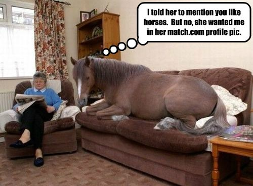 I told her to mention you like horses.  But no, she wanted me in her match.com profile pic.