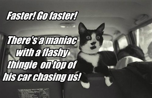 Faster! Go faster!  There's a maniac with a flashy thingie  on top of his car chasing us!
