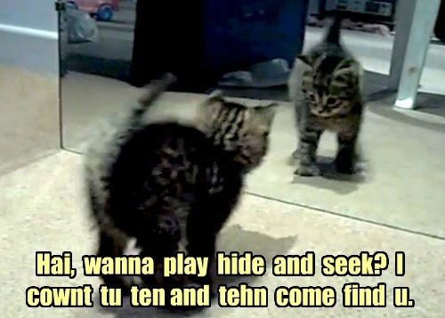 Hai,  wanna  play  hide  and  seek?  I  cownt  tu  ten and  tehn  come  find  u.