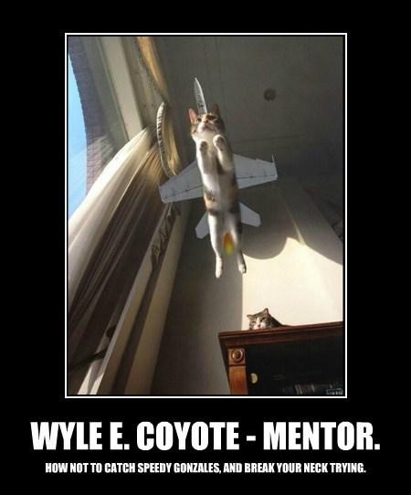 WYLE E. COYOTE - MENTOR.