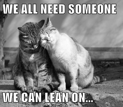WE ALL NEED SOMEONE  WE CAN LEAN ON...
