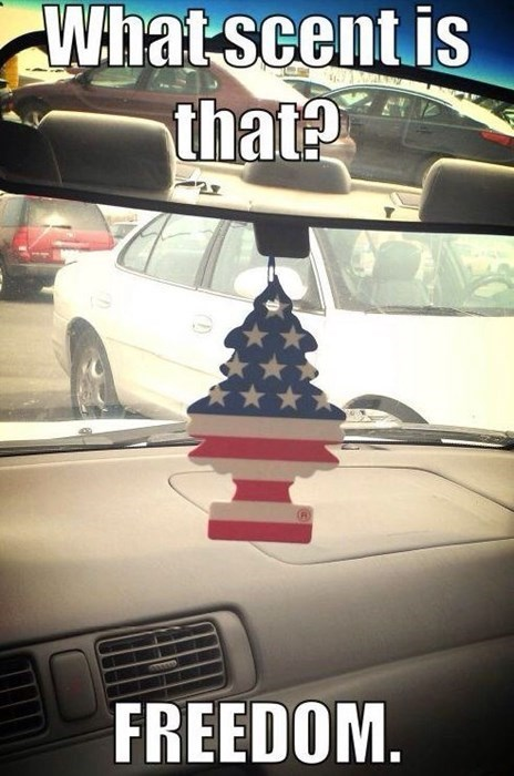 freedom,car fresheners,air fresheners