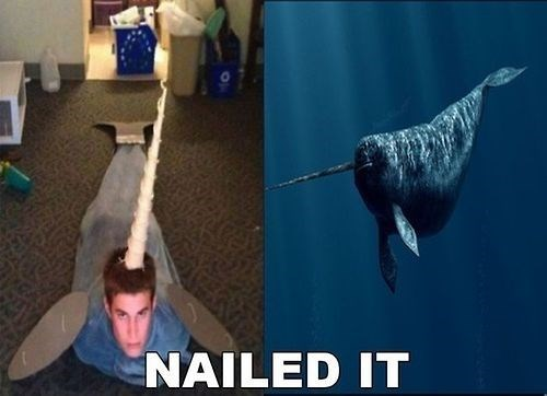 Gnarly Narwhal Costume