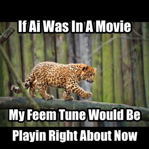 I Wonder Kind Of Music They Play For Leopards Anyway
