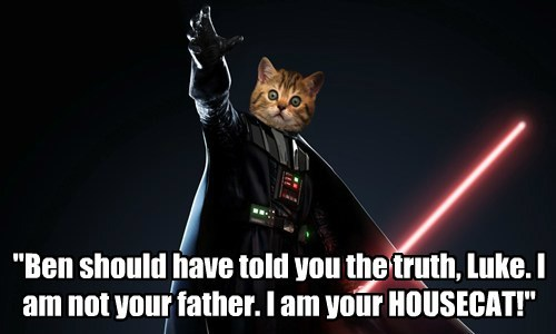 """Ben should have told you the truth, Luke. I am not your father. I am your HOUSECAT!"""