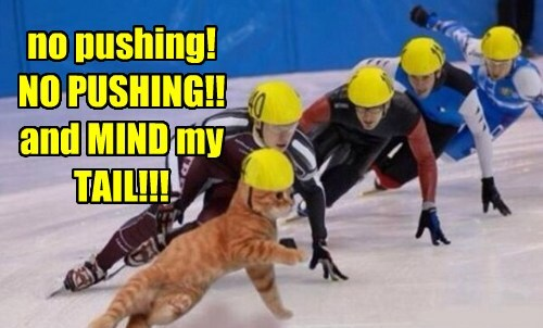 no pushing! NO PUSHING!! and MIND my TAIL!!!