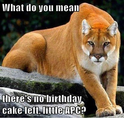 What do you mean  there's no birthday                                                             cake left, little APC?