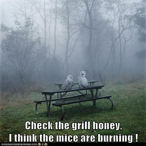 Check the grill honey,                     I think the mice are burning !