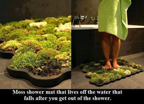 Moss Shower Mat Living off the Water From Your Shower