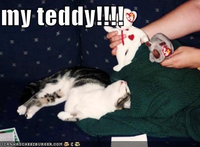 my teddy!!!!