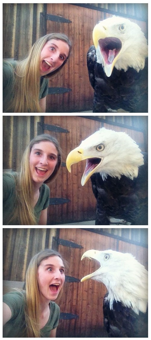 Selfies With a Bald Eagle Are the Best Kind of Selfies