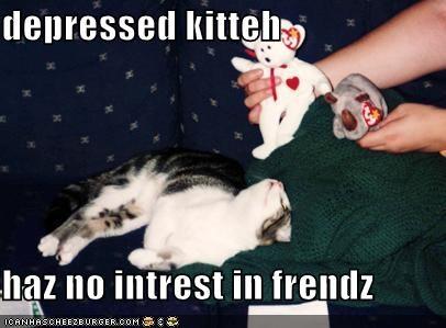 depressed kitteh  haz no intrest in frendz