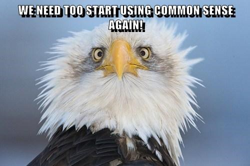 WE NEED TOO START USING COMMON SENSE AGAIN!
