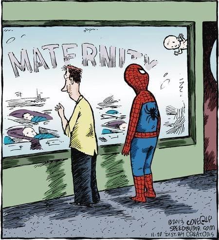 Spider Dad