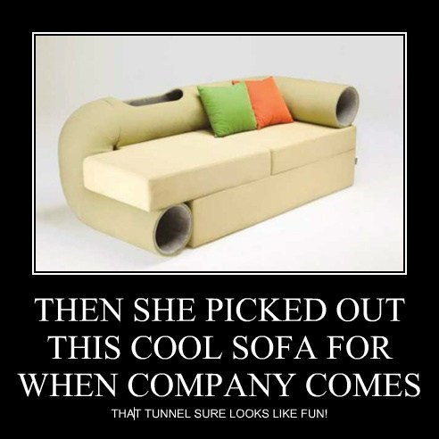 THEN SHE PICKED OUT THIS COOL SOFA FOR WHEN COMPANY COMES