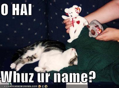 O HAI  Whuz ur name?