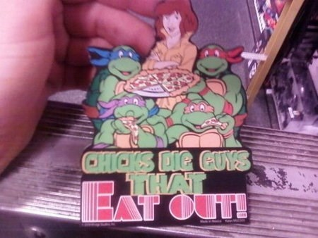 The Turtles Know What's Up