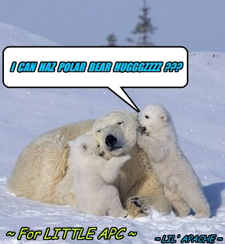 POLAR BEAR HUGGGZZZZ FOR LITTLE APC...