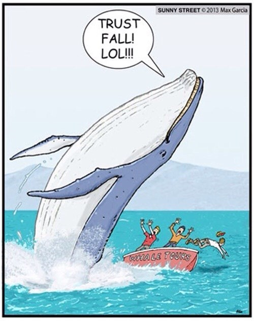This is Why Whales Can't Trust People...