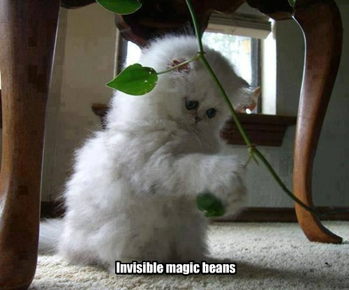 Invisible magic beans