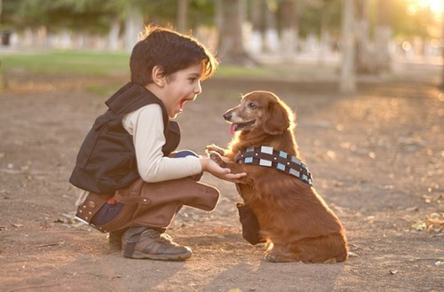 Who Knew Chewbacca and Han Solo Could Be Such an Adorable Duo?