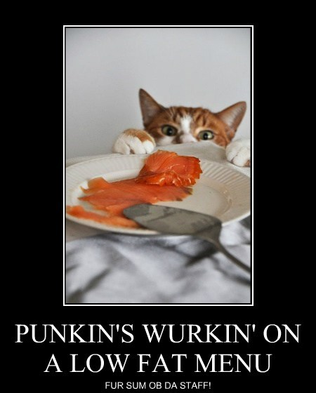 PUNKIN'S WURKIN' ON A LOW FAT MENU