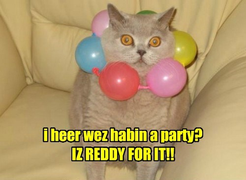 i heer wez habin a party? IZ REDDY FOR IT!!