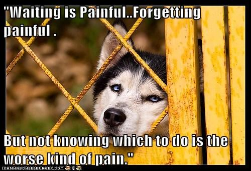 """Waiting is Painful..Forgetting painful .  But not knowing which to do is the  worse kind of pain."""