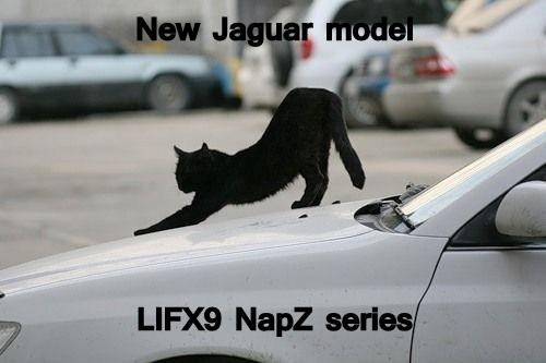 New Jaguar model   LIFX9 NapZ series