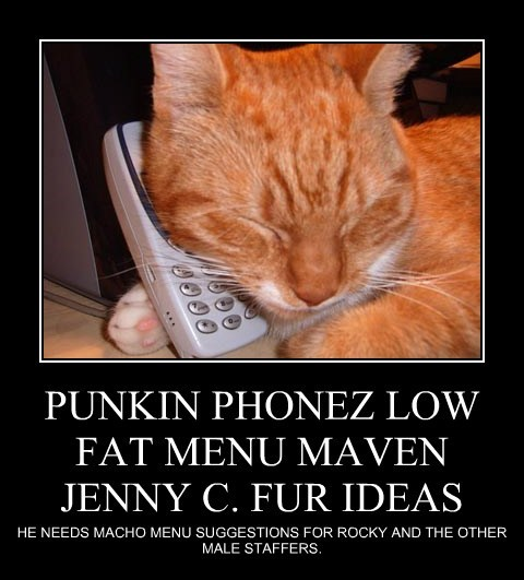 PUNKIN PHONEZ LOW FAT MENU MAVEN JENNY C. FUR IDEAS