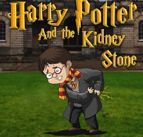 The Lesser Known 8th Harry Potter Novel